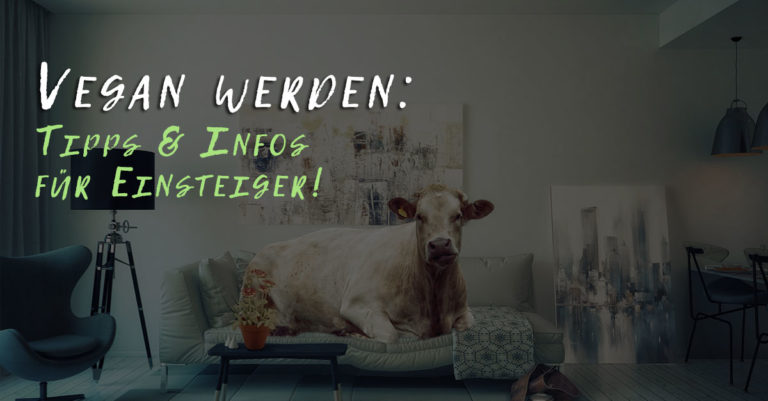 Vegan werden: Tipps & Infos für Einsteiger!
