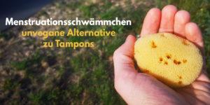 Menstruationsschwämme: natürliche Tampon-Alternative im Fokus