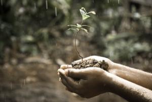 Nachhaltigkeit & Umweltschutz