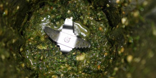 Veganes Rucola-Kräuter-Pesto