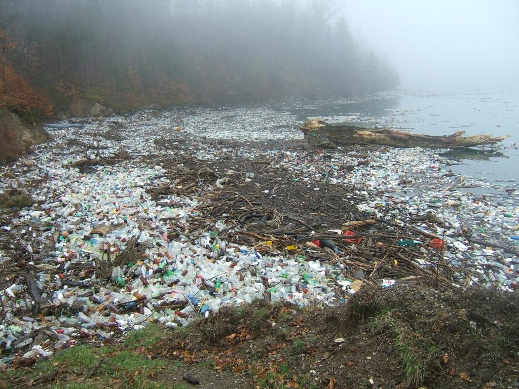 Umweltbelastung durch Plaste